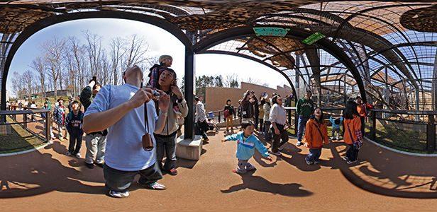 旭山動物園猛獣館